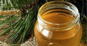 Marmaris Pine Honey