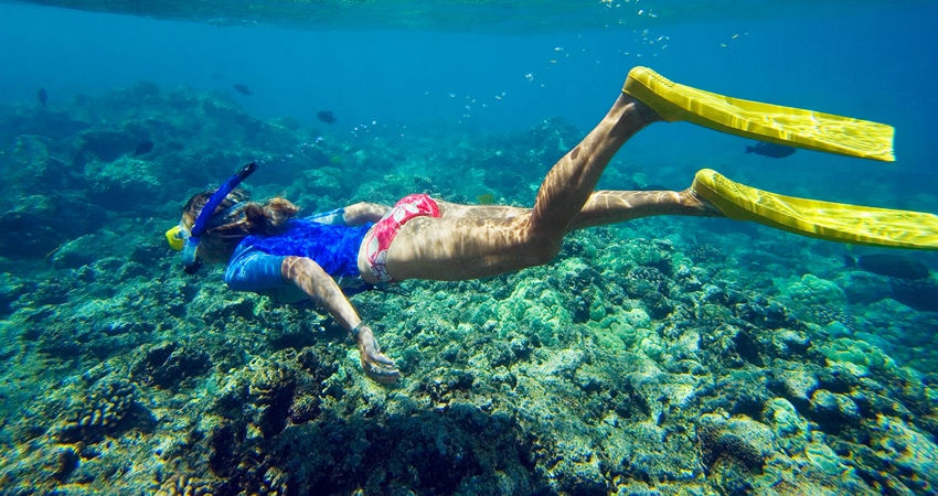 Mamaris Snorkeling Tour